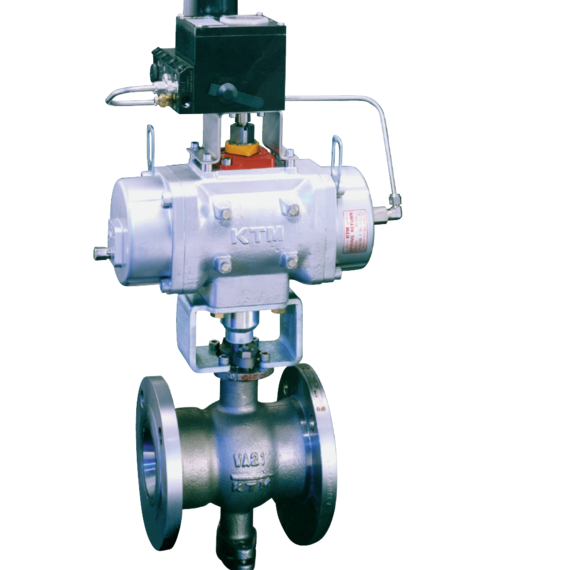Dual-V Hi-Performance Control Ball Valves