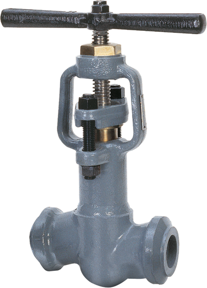 Series 7000 T-Pattern Globe Valves